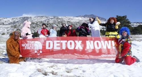 Nella foto il gruppo Greenpeace Catania  sull'Etna